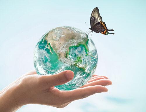 La carta dei principi ambientali