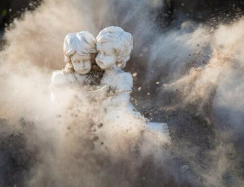 La cultura odierna è solo polvere?