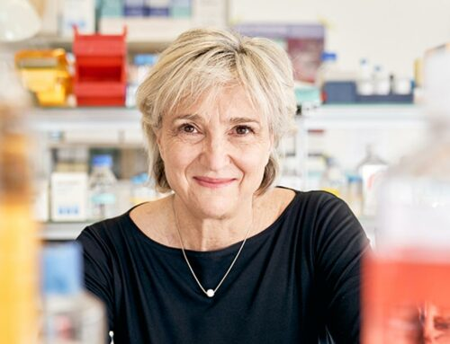 I ricercatori dell'Università di Basilea stanno sviluppando una terapia contro qualsiasi cancro
